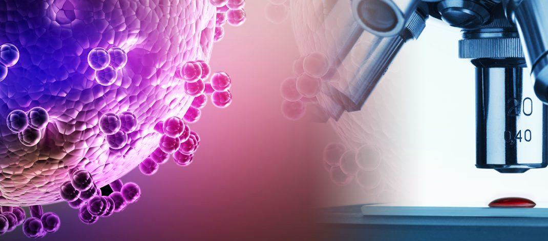 За сложната наука имунология, казано на достъпен език
